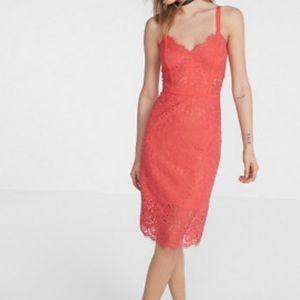 Coral Lace Bodycon Dress